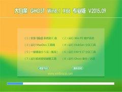 大白菜 GHOST WIN8.1 32位 专业版 2015.09